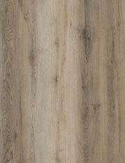 Hybrid -Antique Oak